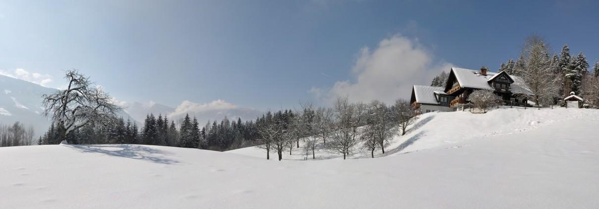 Winter Panorama Bio Bauernhof Leitenmüller in Ramsau am Dachstein