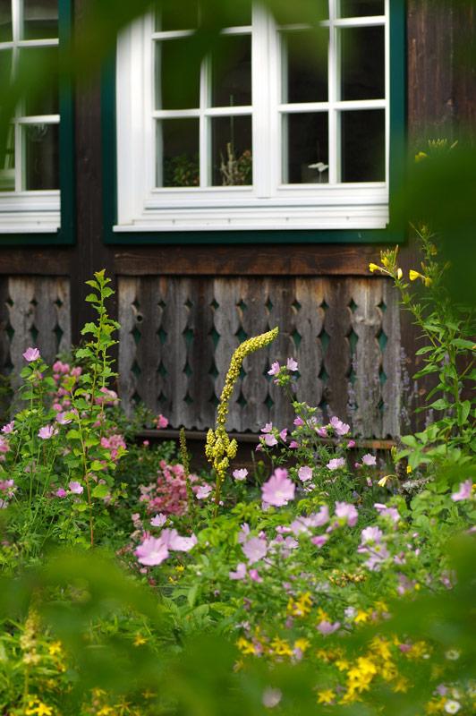 es blüht und grünt im Garten am Bio Bauernhof Leitenmüller