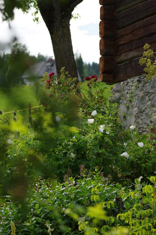 Blick in den Bauerngarten-Bio Bauernhof Leitenmüller