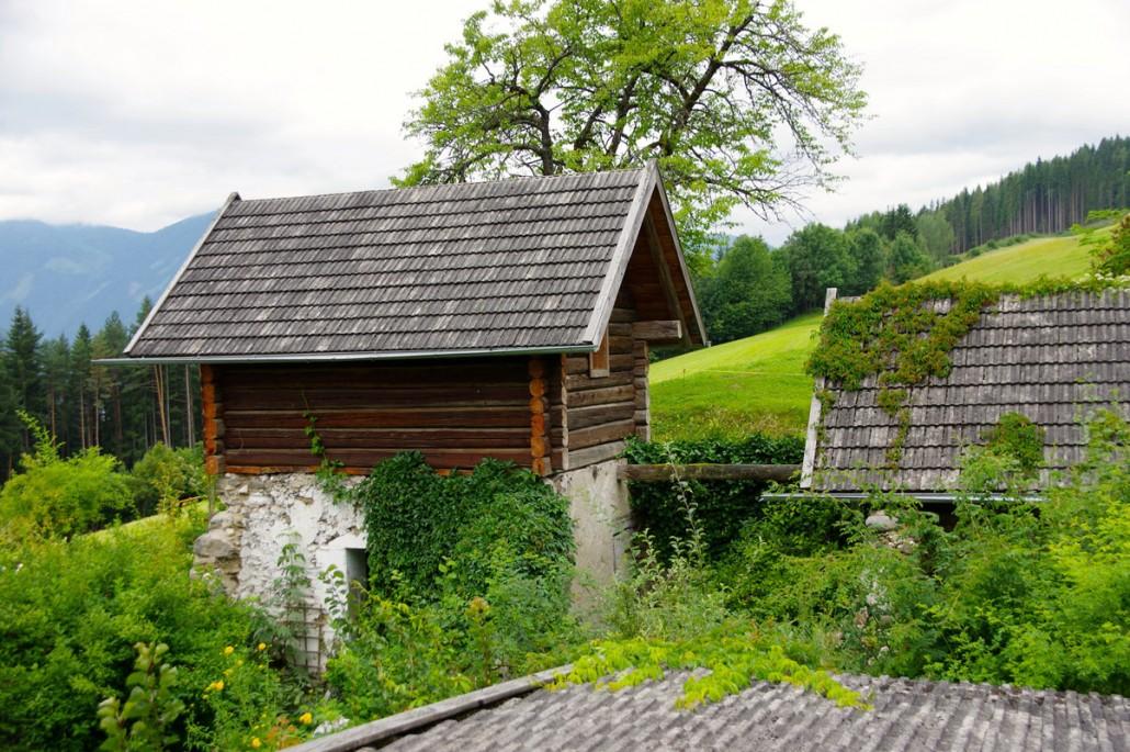 Blick in die grüne Natur-Bio Bauernhof Leitenmüller