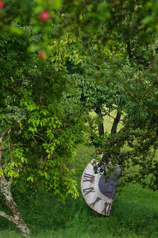 im Garten die Zeit vergessen lasssen-Bio Bauernhof Leitenmüller
