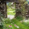 Ruinengarten-Garten Paradies am Bio Bauernhof Leitenmüller
