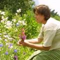 Bio Bauernhof Leitenmüller - Bauerngarten mit vielen bunten Blumen