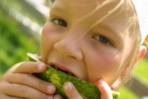 Kinder auf Entdeckungsreise. Sehen, riechen & schmecken - Bio Bauernhof Leitenmüller
