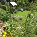Blick in den wunderschönen Garten-Bio Bauernhof Leitenmüller