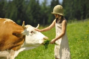 Bio Bauernhof Leitenmüller - Familien Urlaub am Land