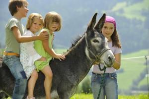 Bio Bauernhof Leitenmüller-Landurlaub für die ganze Familie