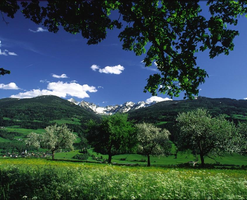 frischer Frühlingsdurft überall - Naturlandschaft rund um den Bio Bauernhof Leitenmüller