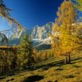 Wandern im Herbst-Brandriedel in Ramsau am Dachstein