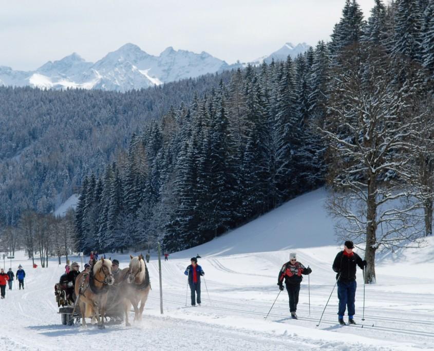 Winterurlaub Pferdeschlittenfahrt-Ramsau am Dachstein