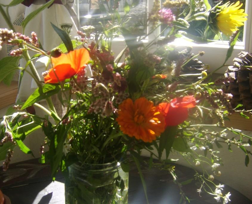 bunter Blumenstrauß aus dem Gaten-Bio Bauernhof Leitenmüller