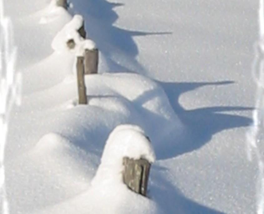 winterliche Umgebung - Bio Bauernhof Leitenmüller