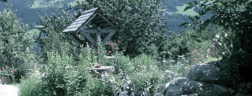 Landwohnung Waldblick - Bio Bauernhof Leitenmüller
