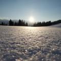 Winterurlaub in den Bergen - Bio Bauernhof Leitenmüller